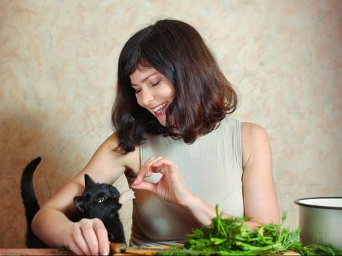 猫と野菜イメージ