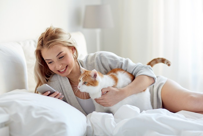 猫とスマホを見る女性
