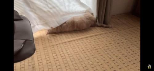 カーテンの下