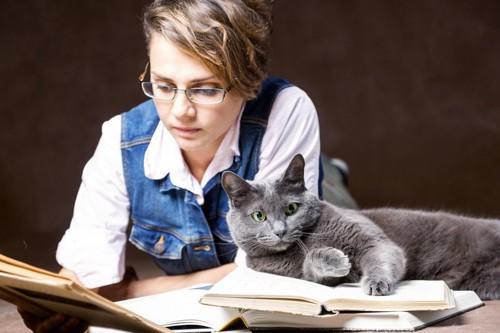 飼い主と読書するロシアンブルー