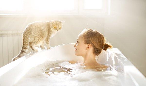 お風呂場に入る女性と猫