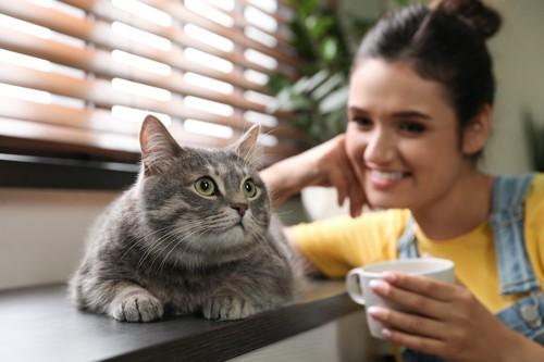 猫を見つめるカップを持った女性