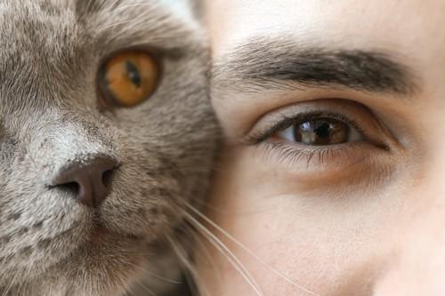 猫と男性のアップ