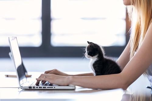 女性とパソコンを見る猫