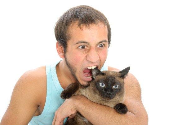猫を噛もうとする男性