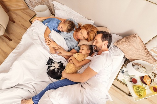 人の家族と一緒にベットで眠る猫