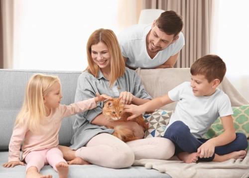 猫を可愛がっている家族