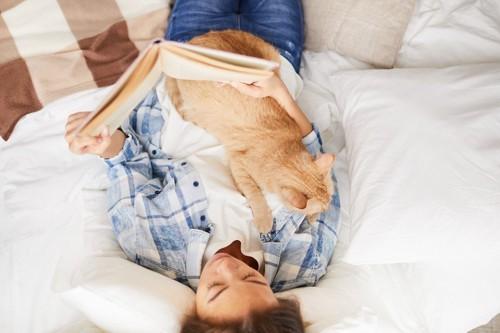 本を読む人の上に乗る猫