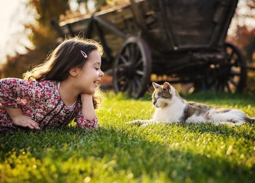 芝生の上で猫と向かい合って話をする女の子