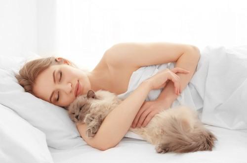 一緒に寝る飼い主と猫