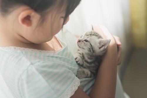 子猫を抱く女の子