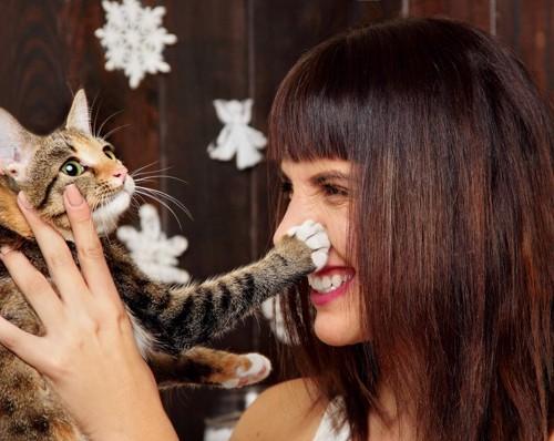 猫にパンチされる人