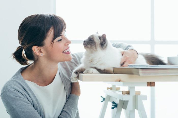 女性と見つめあう猫