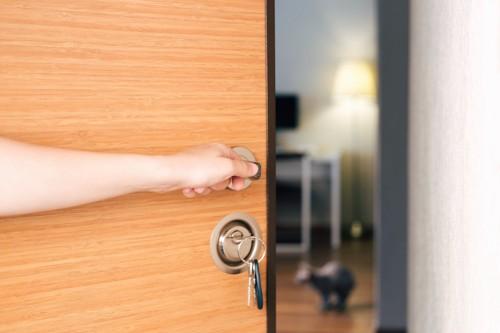 鍵を使って扉を開く人の手