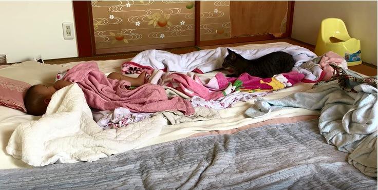 赤ちゃんとのんびりする猫