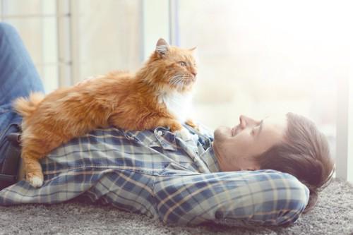 寝転ぶ飼い主の胸の上に乗る猫