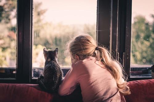 少女を慰める猫