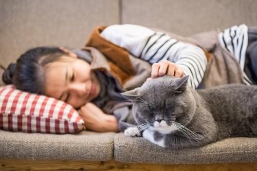 猫と一緒に寝る人
