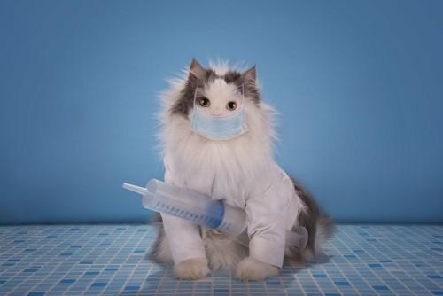 注射器を抱えたマスクをした猫