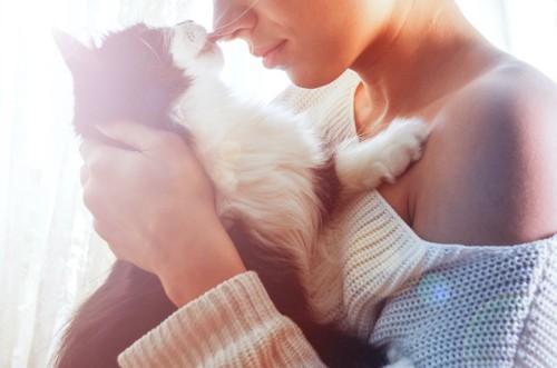 抱っこされて飼い主の顔を舐める猫