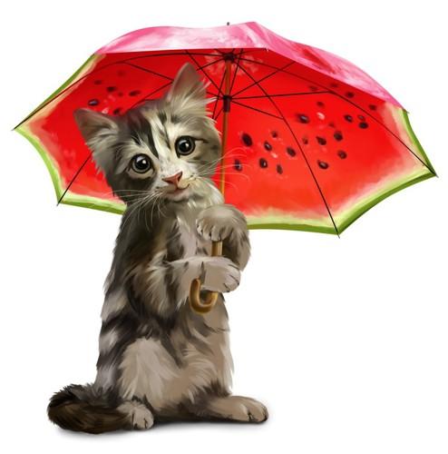 スイカの傘を持つ猫