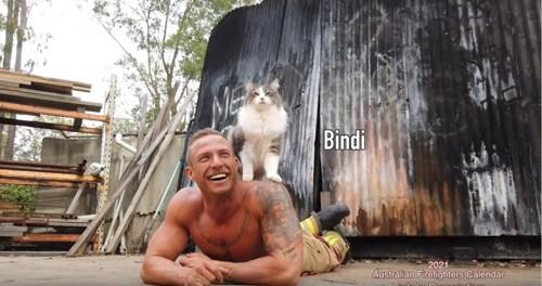 男性の背中に長毛の猫