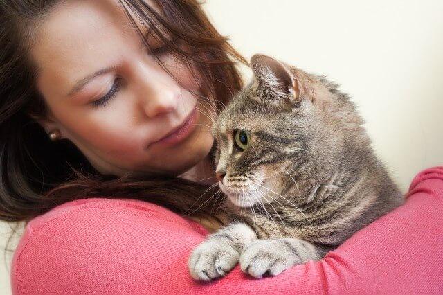 抱きかかえられた捨て猫