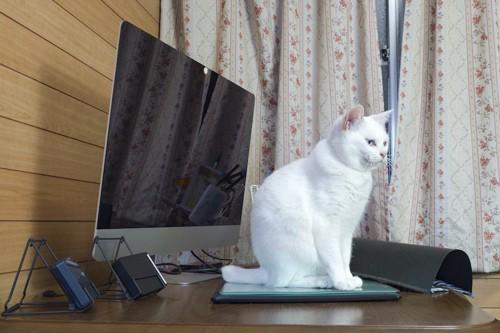 台に置かれたパソコンに乗る猫