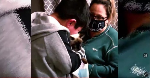 シャム猫を抱いた女性と少年