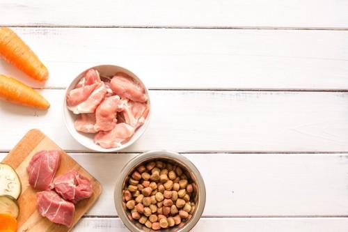 生肉と野菜とキャットフード