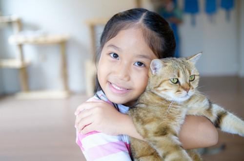 子供に抱っこされて我慢する猫