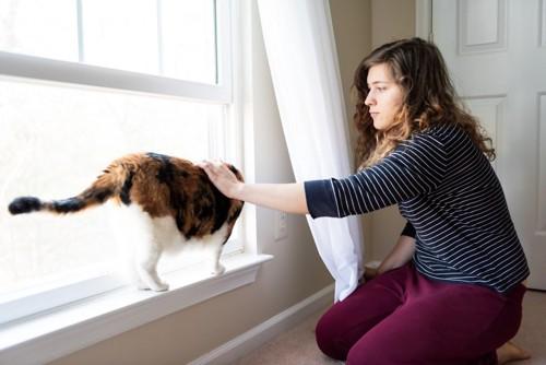 窓際にいる飼い主と猫