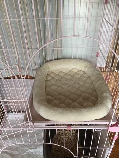 2段ケージのベッド