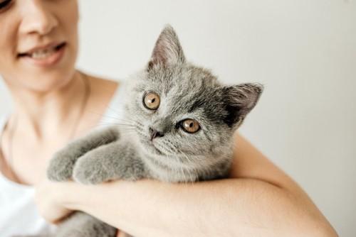 女性の腕に抱かれる猫