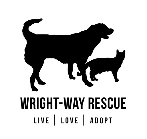 Staff at Wright Way Rescue