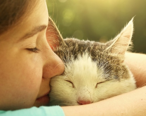 猫にキスをする少女