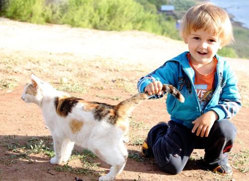 猫の尻尾をつかむ子供