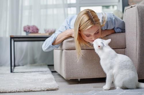 女性と鼻チューする猫