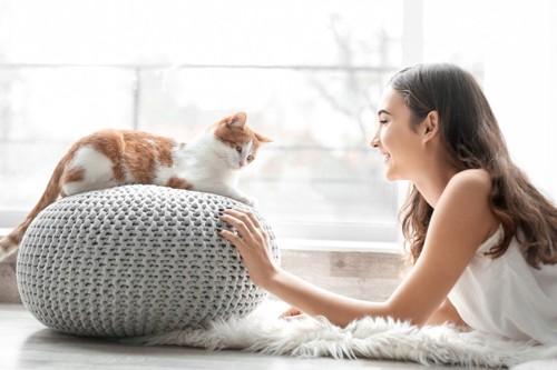猫に話しかける人