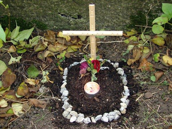 お花が供えられたペットのお墓