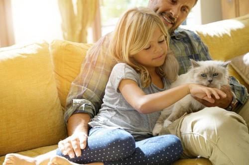 猫と遊ぶ親子