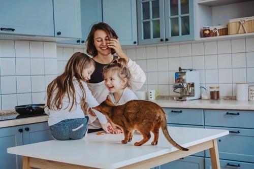 家族と一緒にテーブルにいる猫