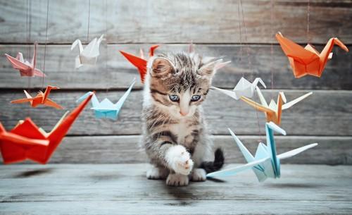 折り鶴と遊ぶ猫