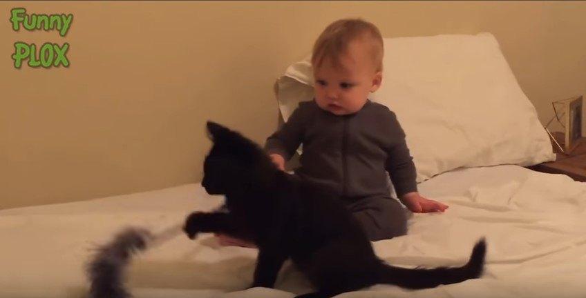 ベッド上の黒猫と乳児