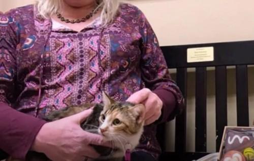 猫を膝に乗せた女性