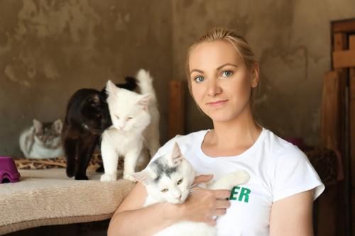 アニマルシェルターで保護している猫たち