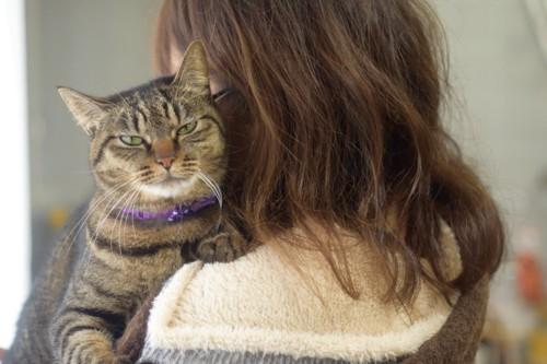 猫を抱っこする女性の後ろ姿