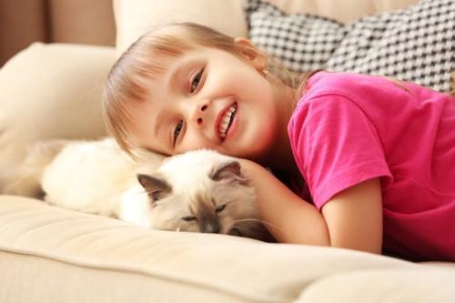 少女と一緒の猫