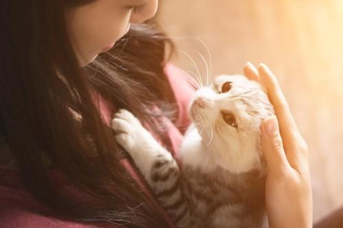 猫を抱いて撫でている女性