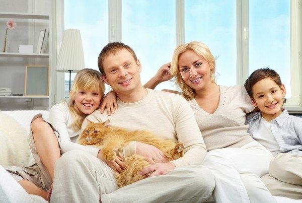 茶色い猫と家族